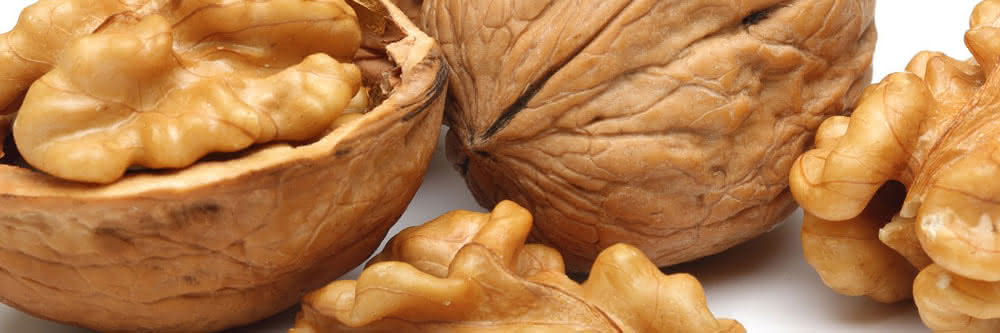 welke noten koolhydraatarm