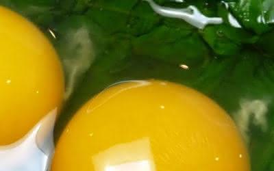 Eiwit in spinazie en eieren vergroot reactievermogen